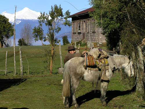 Horseriding & Hiking Cochamo Valley