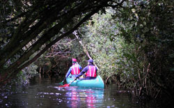 Canoe Trips close to Puerto Varas
